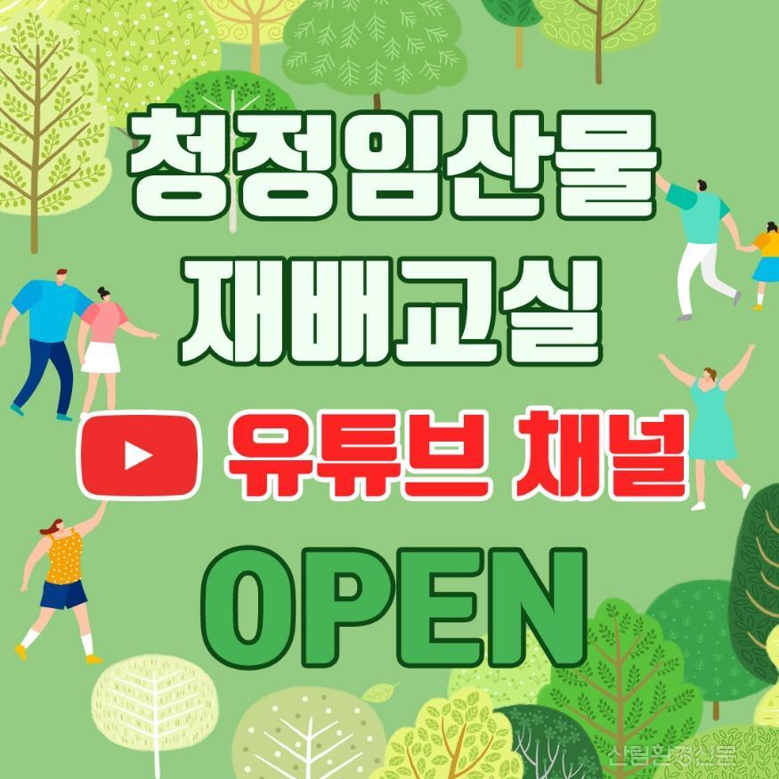 교육실_보도자료_1.유튜브채널OPEN.jpg