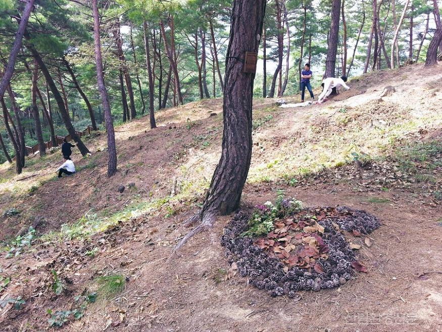 (사진3) 국립하늘숲 추모원 전경.jpg