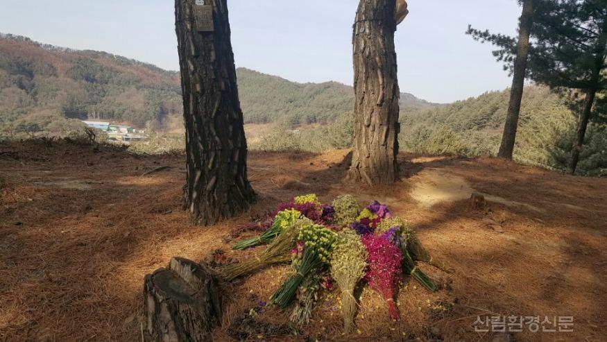 (사진2) 국립하늘숲추모원 전경.jpg