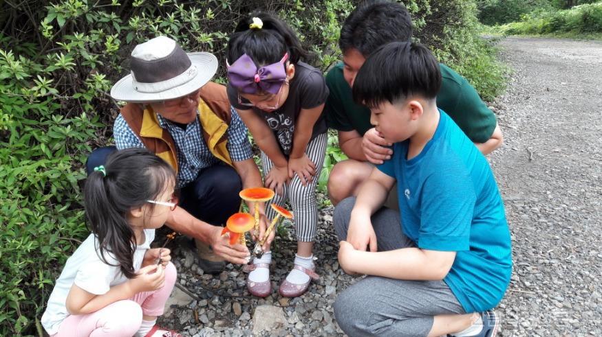 (사진2) 국립오서산자연휴양림(충남 보령)에서 버섯 탐험대 체험프로그램에 참여하고 있는 모습이다..jpg