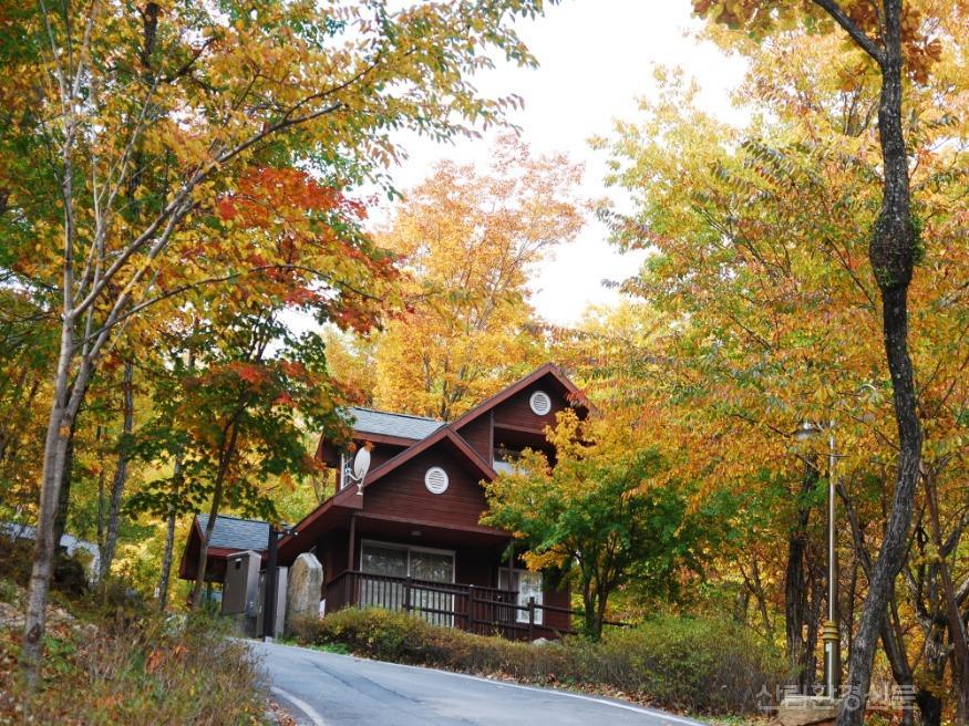 사진3_황정산 숲속의 집.JPG