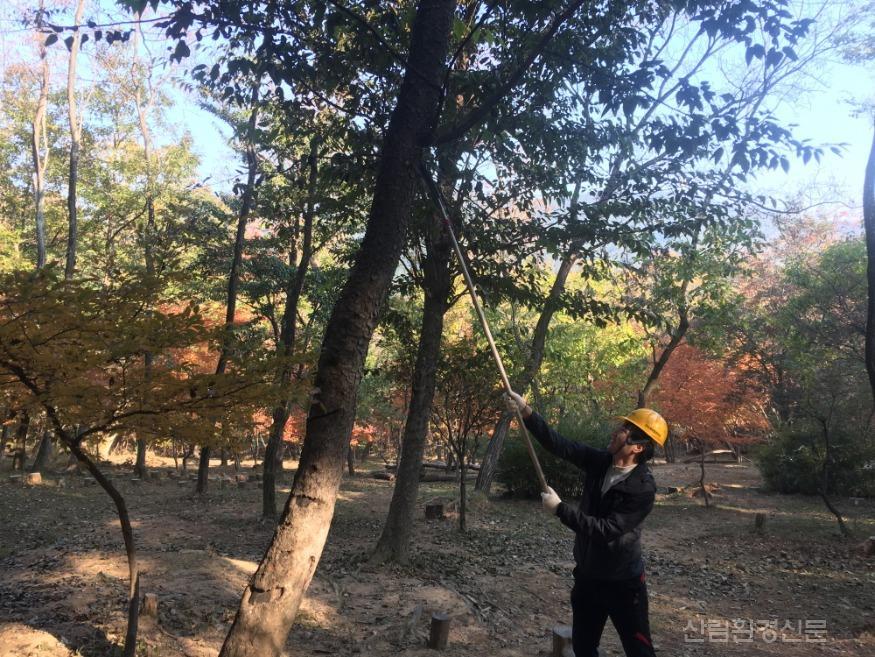 구미관리소 유아숲체험원 숲가꾸기 행사 (2).jpg