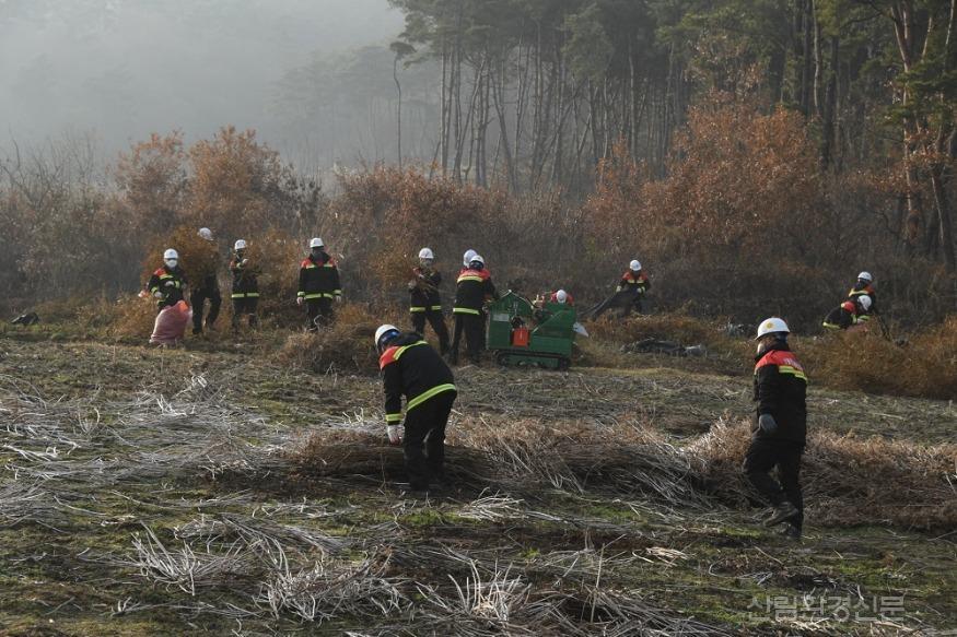 사진2_산림인접지 영농부산물 수거 및 파쇄.JPG