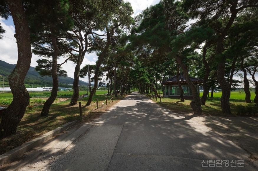 0309 농촌활력과-남원 동편제마을 테마가 있는 자연마을 공모 선정 (2).jpg