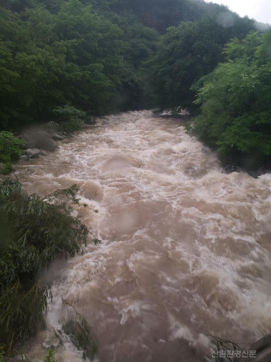 돌발홍수 사진2-2018년 화천군 광덕 계곡이 범람직전까지 다달은 모습.jpg