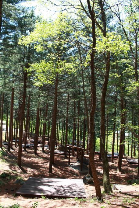 (사진 3) 국립덕유산자연휴양림 야영장 모습입니다..jpg