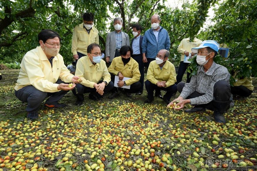 사진1_박종호 산림청장(앞줄 왼쪽 두번째)  태풍으로 인한 임산물 피해 현장 점검.JPG